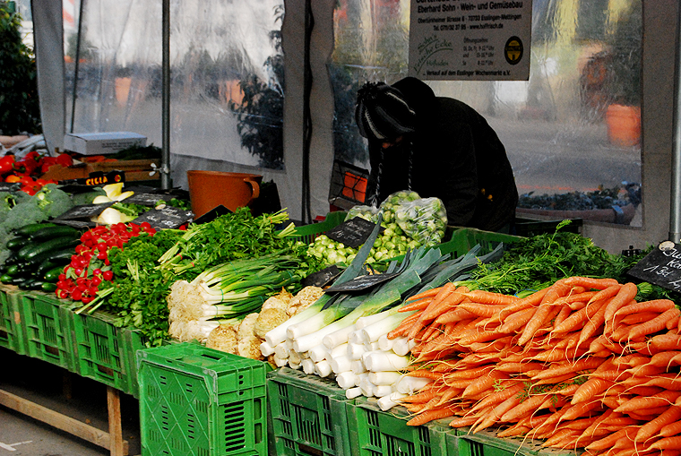 esslingen am neckar market 12