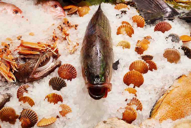 eataly_fish