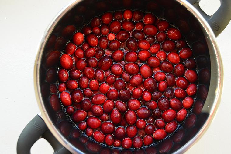 cranberry sauce_7