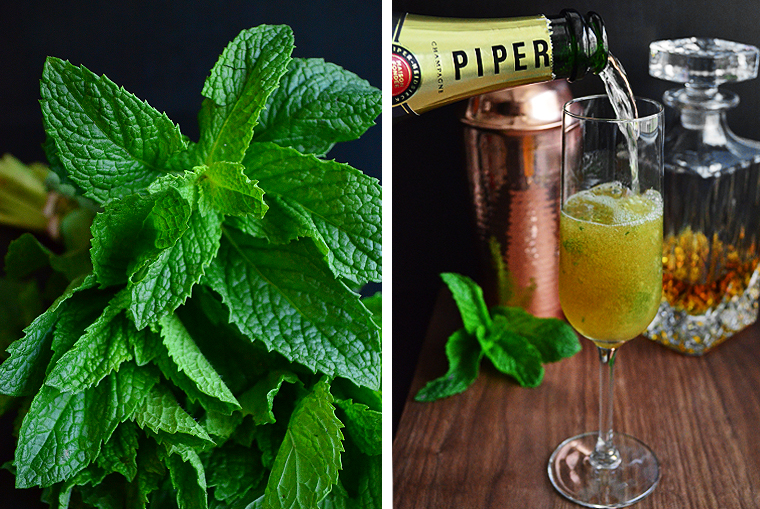 champagne_mint_julep1_ acookscanvas-copyright2012-2015_49 copy