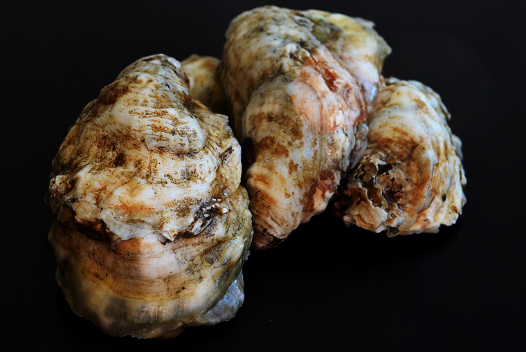 oysters4_boathousetraversecity_acookscanvas-copyright2012-2017_71