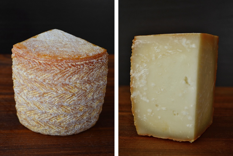 French cheeses_Revol1_acookscanvas-copyright2012-2017_84