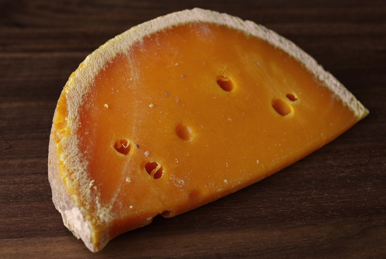 French cheeses_Revol4_acookscanvas-copyright2012-2017_84